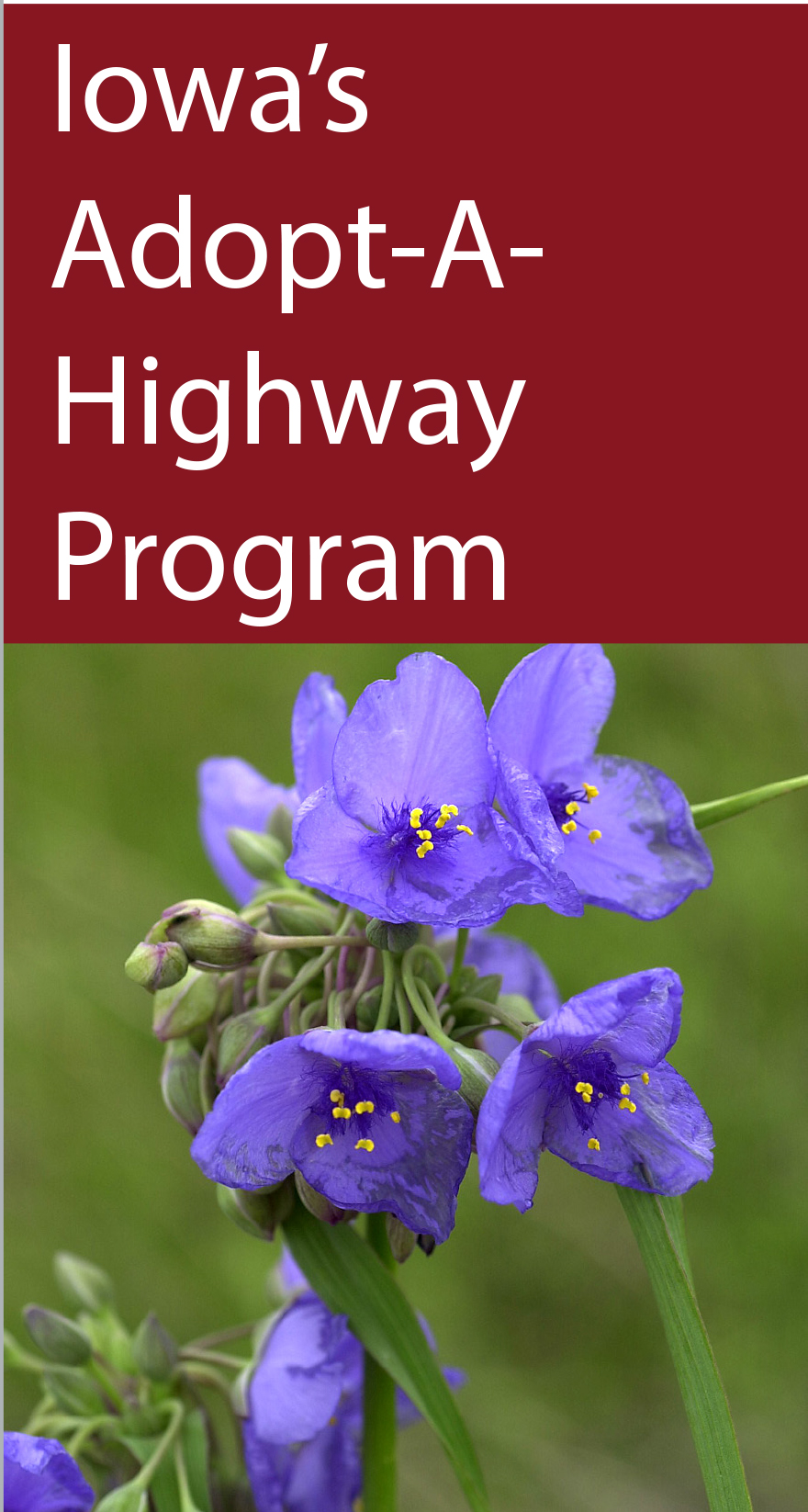 Iowa�s Adopt-A-Highway Program