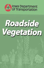 Roadside Vegetation Q&A
