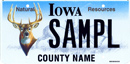 Natural Resources Deer License Plate