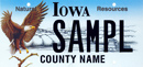 Natural Resources Eagle License Plate